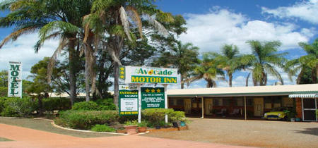 Avocado Motor Inn - Maitland Accommodation