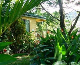 Daintree Valley Haven - Maitland Accommodation