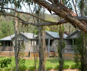 The Homestead Cabins Brogo - Maitland Accommodation