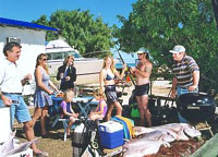 Shark Bay Cottages - Maitland Accommodation