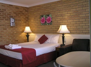 Blue Violet Motor Inn - Maitland Accommodation