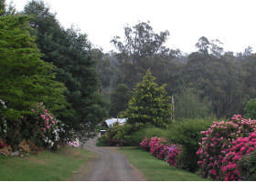 Mountain Rivers Lodge - Maitland Accommodation