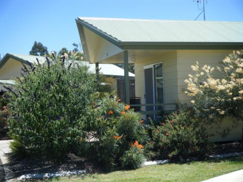 Pepper Tree Cabins - Maitland Accommodation