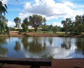 Gemtree Caravan and Tourist Park - Maitland Accommodation