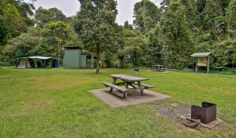 Forest Tops campground - Maitland Accommodation