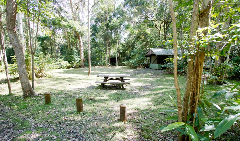 Iron Pot Creek campground - Maitland Accommodation