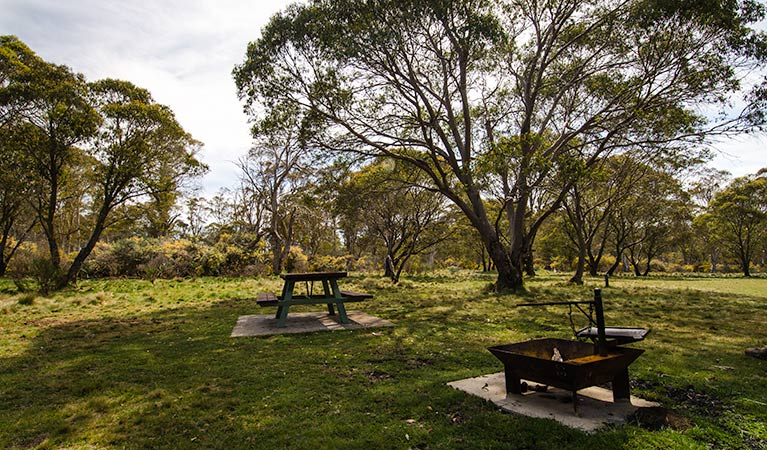 Little Murray Campground - Maitland Accommodation
