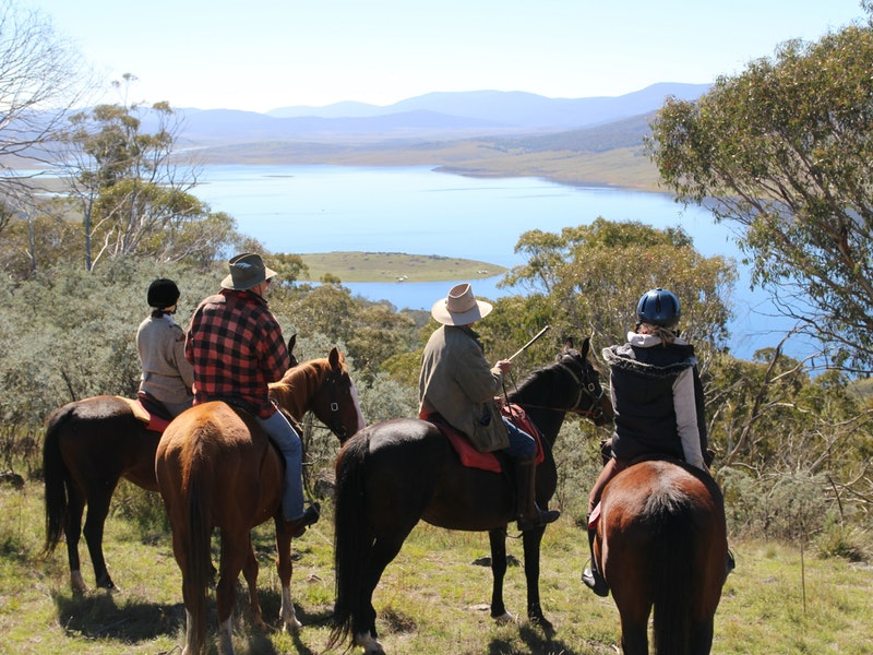 Reynella Homestead and Horseback Rides - Maitland Accommodation
