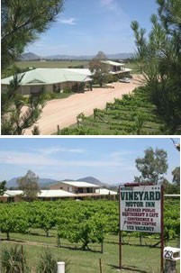 Mudgee Vineyard Motor Inn - Maitland Accommodation