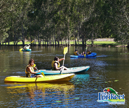 The Lorikeet Tourist Park - Maitland Accommodation