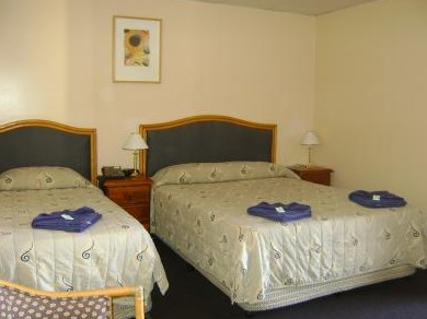 Mudgee Motor Inn - Maitland Accommodation