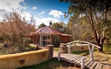 Starline Alpaca Farm Stay - Maitland Accommodation