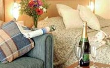 Escape  Valentine - Maitland Accommodation