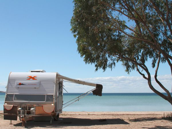 Discovery Parks - Streaky Bay Foreshore - Maitland Accommodation
