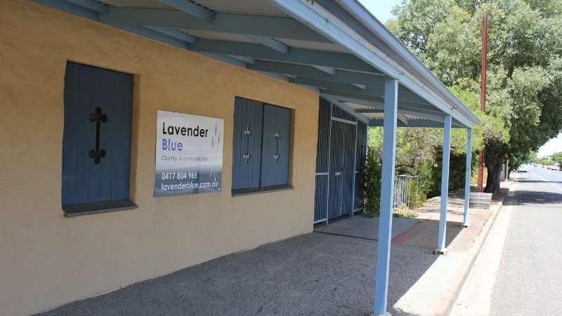 Lavender Blue Country Accommodation - Maitland Accommodation