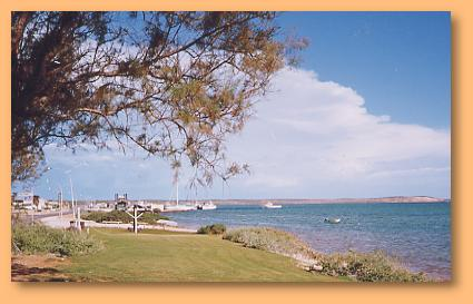 Denham Seaside Tourist Village - Maitland Accommodation