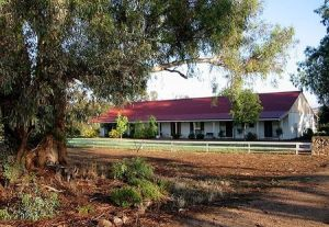 Hanericka Farm Stay - Maitland Accommodation