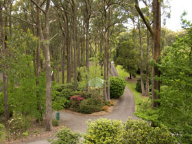 Mount Lofty Botanic Garden - Maitland Accommodation