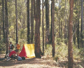 Lane Poole Reserve - Maitland Accommodation