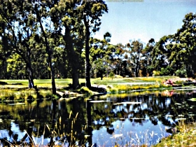 Smithton Country Club - Maitland Accommodation