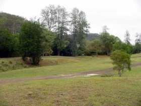 Brooyar State Forest - Maitland Accommodation