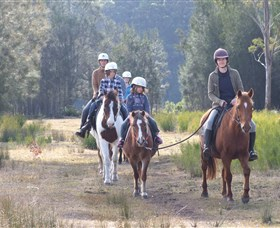 Horse Riding at Oaks Ranch and Country Club - Maitland Accommodation