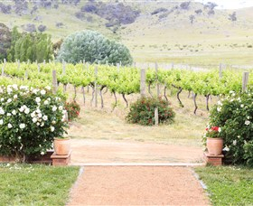 Brindabella Hills Winery - Maitland Accommodation