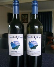 Thunder Ridge Wines - Maitland Accommodation