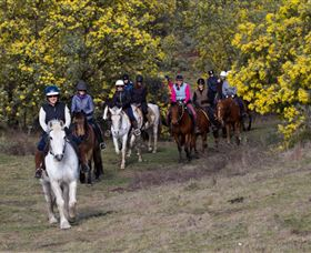 Burnelee Excursions on Horseback - Maitland Accommodation