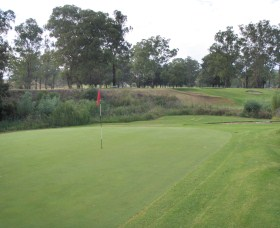 Muswellbrook Golf Club - Maitland Accommodation