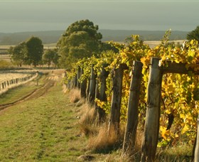 Captains Creek Organic Wines - Maitland Accommodation