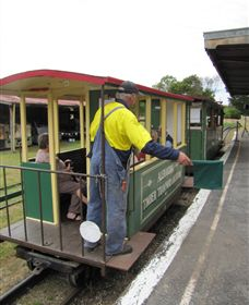 Alexandra Timber Tramway - Maitland Accommodation