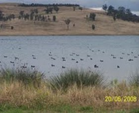 Lake Liddell Recreation Area - Maitland Accommodation