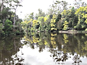 Arthur River - Maitland Accommodation