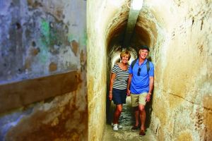 Rottnest Island Full-Day Trip With Guided Island Tour From Perth - Maitland Accommodation