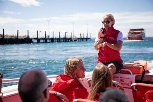 Rottnest Island Tour from Perth or Fremantle including Adventure Speed Boat Ride - Maitland Accommodation
