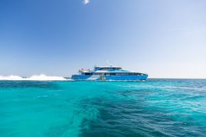 Fremantle to Rottnest Island Roundtrip Ferry Ticket - Maitland Accommodation
