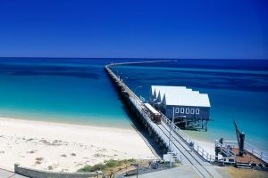 Full-Day Busselton Jetty Train Ride  Dophin Discovery - Maitland Accommodation