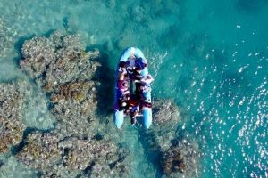 Glass-bottom boat tour with Whitehaven Beach - Maitland Accommodation