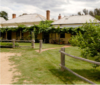 The Blue Duck Inn Hotel - Maitland Accommodation