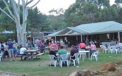 Bush Shack Brewery - Maitland Accommodation
