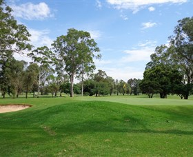 Singleton Golf Club - Maitland Accommodation