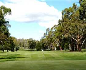 Cooma Golf Club - Maitland Accommodation