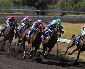 Alice Springs Turf Club - Maitland Accommodation