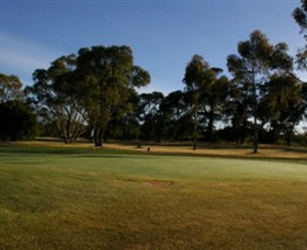 Winchelsea Golf Club - Maitland Accommodation