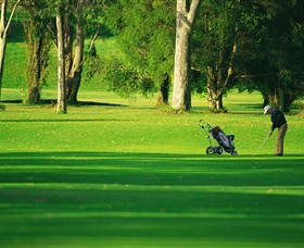 Foster Golf Club - Maitland Accommodation