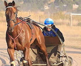 Ballarat  District Trotting Club - Maitland Accommodation