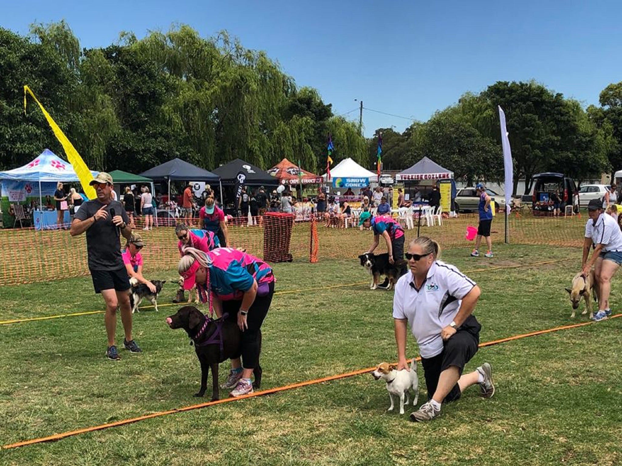 Dogs in the Park Orange - Maitland Accommodation